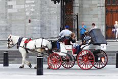 カナダのフランス語圏の中心地。レトロな街並みと近代的な建物によってつくられた独特な雰囲気が漂っています。