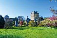 南部地域の中心都市。街のいたるところに中世の建築物が残っており、アイルランドの歴史が感じられます。