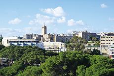 首都の隣町として発展したマルタ島の主要観光地域。海沿いにはホテルやレストランが立ち並び、多くの人でにぎわいます。