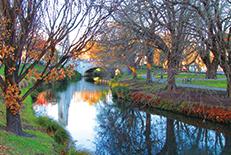 まるで公園の中に街があるかのような姿から、「ガーデンシティ」の愛称で親しまれている南島最大の都市。