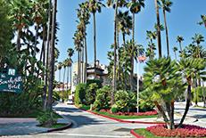 留学生に人気のカリフォルニア州の中でも最もメジャーな都市。ハリウッドを筆頭にアメリカの魅力が詰まっています。