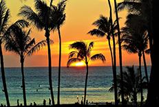 日本人にとって馴染み深いハワイ諸島。島によっても個性があり、自然の美しさと豊富なアクティビティも楽しめます。